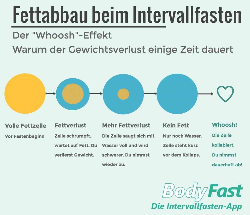 Fettabbau beim Intervallfasten - BodyFast Infografik
